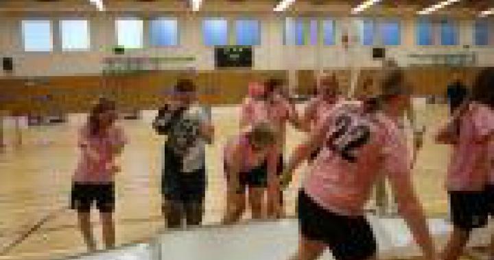 Mezinárodní utkání Česko-Slovensko ve florbalu